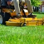 lawn-care-643559_640