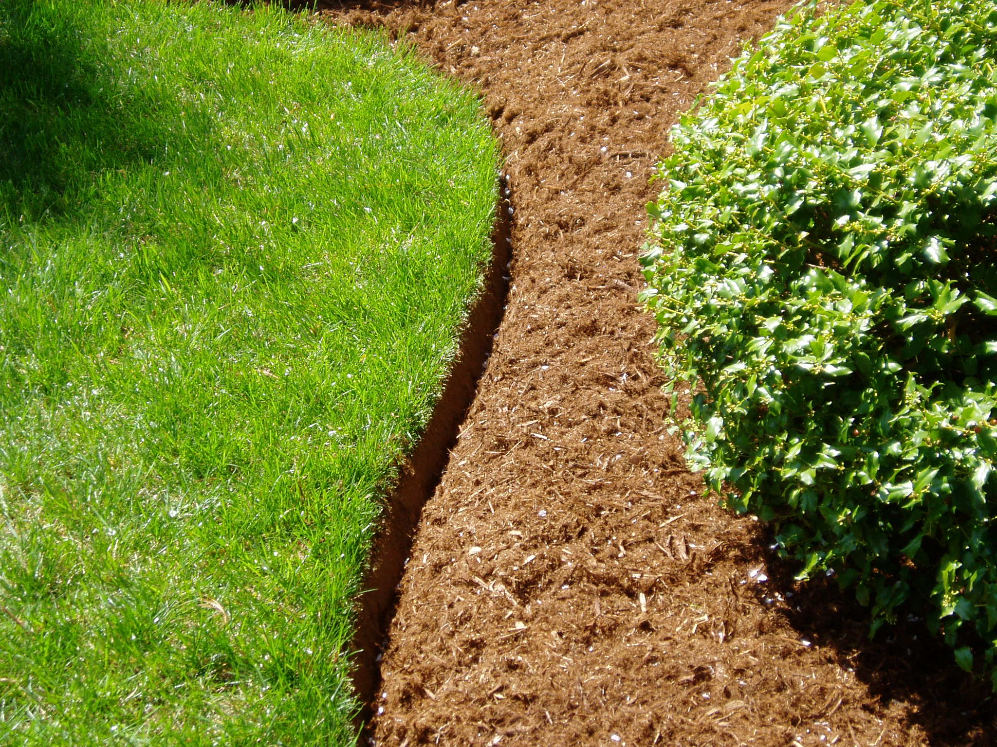 landscape edging peter doran lawn landscaping