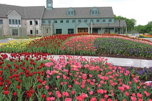 Thank you! We need your help. Would you share your experience on one of  these sites? - MN Landscape Arboretum Peter Doran Lawn