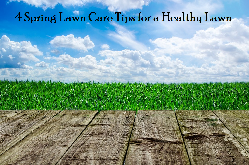 4 Spring Lawn Care Tips for a Healthy Lawn
