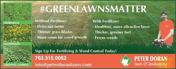 GreenLawnsMatter-with-weeds