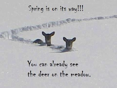 Spring Will Arrive… Eventually