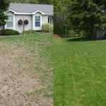 Dethatching and Core Aeration