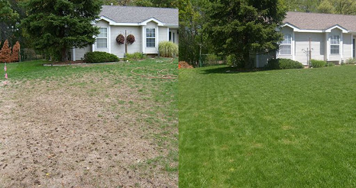 Dethatching and Aerating Your Lawn